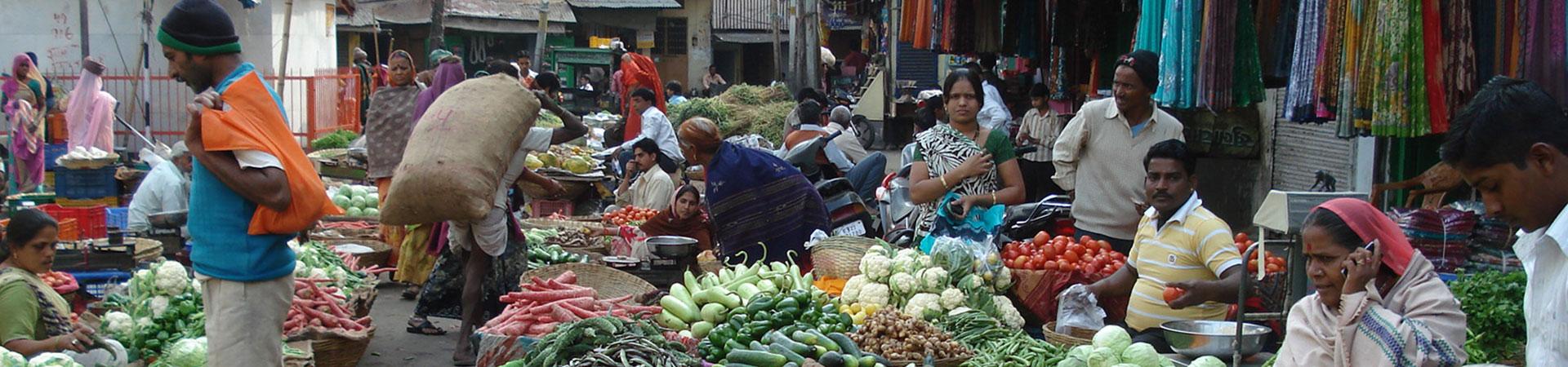 India Local Life Tour